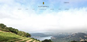Picture of Gandona Website