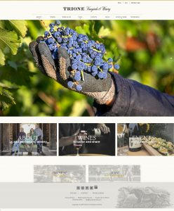 Picture of Trione Winery Website